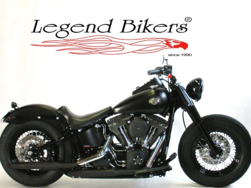 Vednita moto usata Harley Davidson Joe Black (FLSTS) 8
